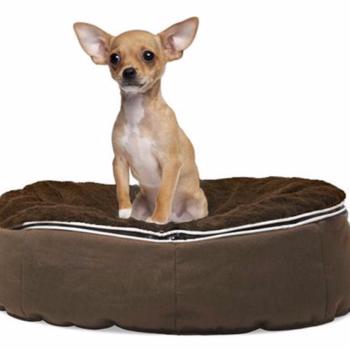 Cama para Mascota Freedom Mini Puppy Confort